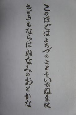 Sdsc01971