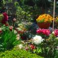 2010春の庭