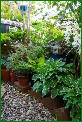2013/05/04 玄関から庭に続くアプローチ2